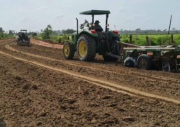 Iracema asfalto em vicinal melhora a renda dos produtores
