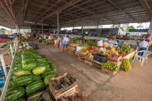 Imagem da feira e de frutas