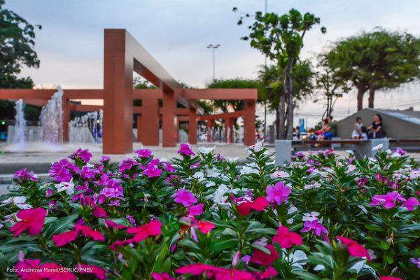 As flores de Boa Vista colorem as praças da cidade