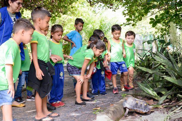 Crianças observam animais no Bosque dos Papagaios
