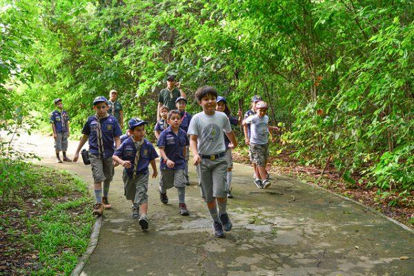 Crianças passeando no bosque dos papagaios