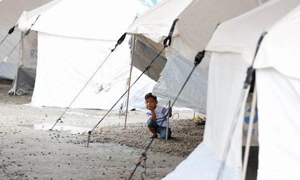 Crise migratória em Roraima Romero Jucá tem solução